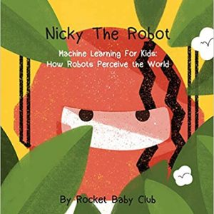 Nicky The Robot: Machine Learning For Kids: How Robots Perceive the World